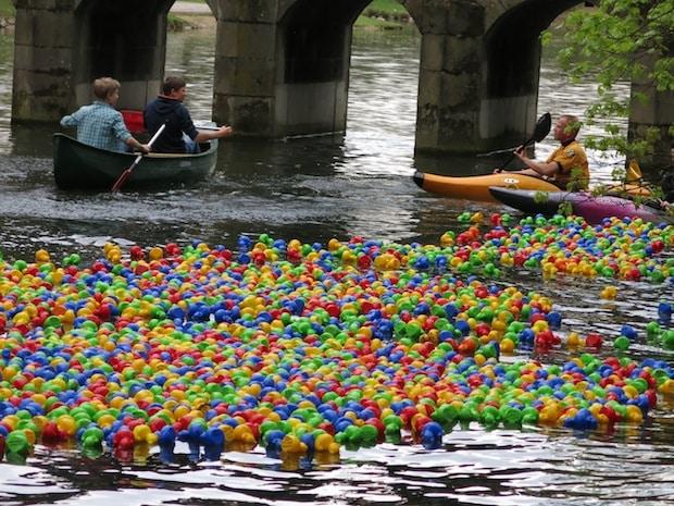 Photo of Lippstadt: Das beliebte Entenrennen startet am Sonntag