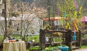 Halver: Traditionelles Kirschblütenfest an der Heesfelder Mühle