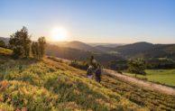 Wanderfreu(n)de auf  der Rundtour-Natur – Pauschalangebot des Ferien Service Schmallenberg