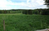 """Märkischer Kreis: Naturschutzgebiet """"Auf dem Giebel"""" ist jetzt 50 Hektar groß"""