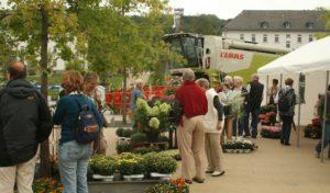 Hemer: Bauernmarkt im Sauerlandpark mit Schweinen