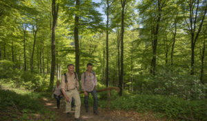 Schmallenberg : Zum 13. Mal die Faszination Rothaarsteig erleben