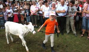 Wendsche Kärmetze: Tierschau gehört seit Jahren zur Kirmes
