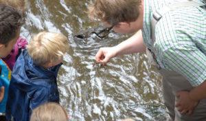 27 kleine Forscher auf großer Entdeckungstour in Hilchenbach