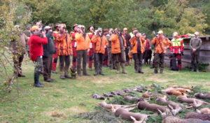 Arnsberg: Wildwald Vosswinkel gibt Informationen zum Jagdschein