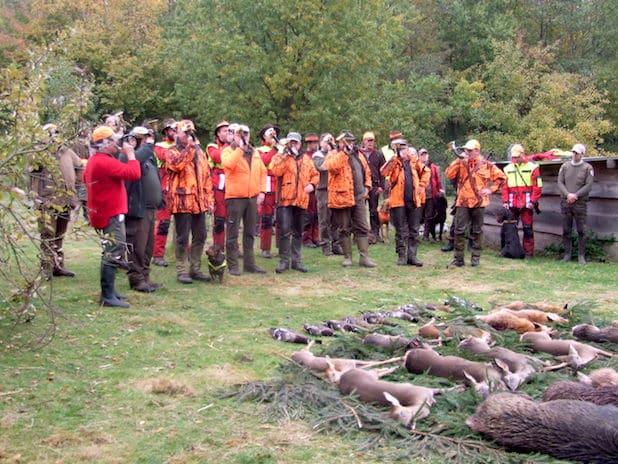 Photo of Arnsberg: Wildwald Vosswinkel gibt Informationen zum Jagdschein