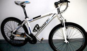 Iserlohn: Wer kann was zu diesem Mountainbike sagen?