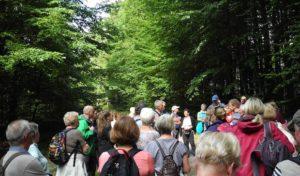Naturlandschaft im südlichen Siegerland entdeckt – Kooperationspartner luden zum Wandertag