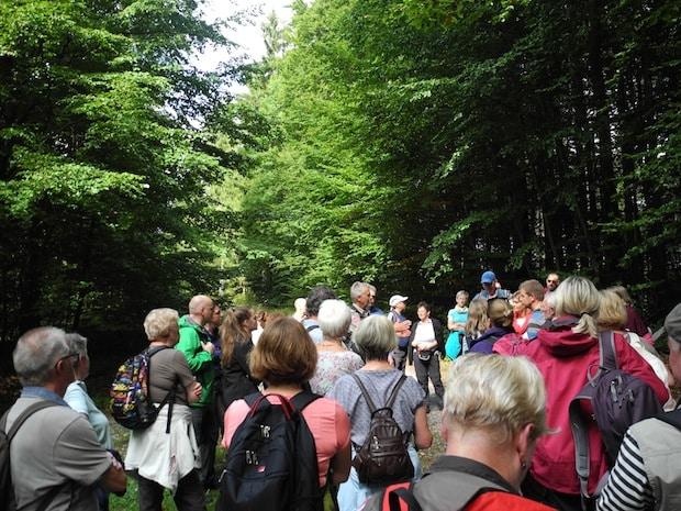 Photo of Naturlandschaft im südlichen Siegerland entdeckt – Kooperationspartner luden zum Wandertag