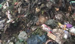 Der Kreis Olpe bittet um mehr Sorgfalt bei der Mülltrennung