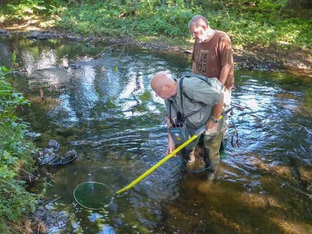 Mitglieder der Fischereigenossenschaft Kreuztal beim Elektrofischen in der Ferndorf (Foto: Michael Frede)