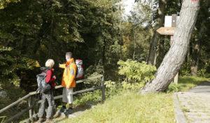 Landschaft im Farbenrausch: Herbstliche Wandererlebnisse in Winterberg