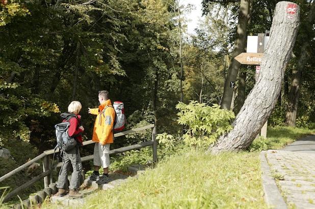 Photo of Landschaft im Farbenrausch: Herbstliche Wandererlebnisse in Winterberg