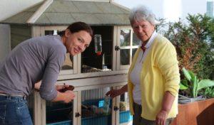 Tag der offenen Tür der Caritas-Tagespflegen in Attendorn, Olpe und Wenden