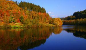 Olpe: Fotowettbewerb – Umwelt-Bilder gesucht