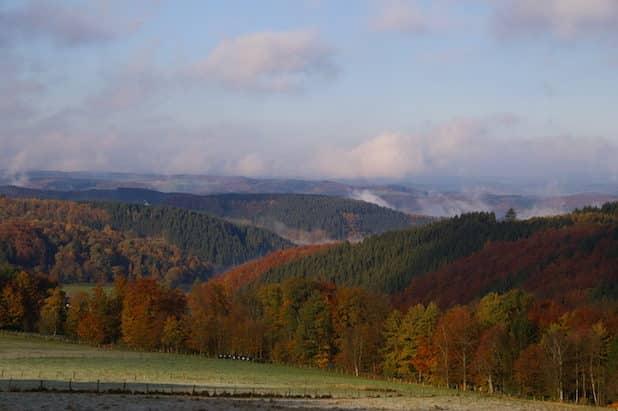 Herbststimmung (Foto: Antonius Klein)