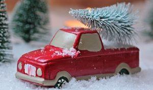 Iserlohn – Weihnachtsbaumabfuhr beginnt am kommenden Montag