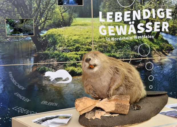 "Photo of Wanderausstellung ""Lebendige Gewässer"" im Kreishaus Soest: Eröffnung am Donnerstag, 16. Februar 2017"