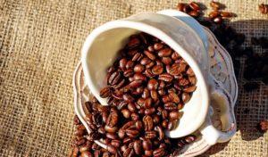 Wie wird man Kaffeeröster