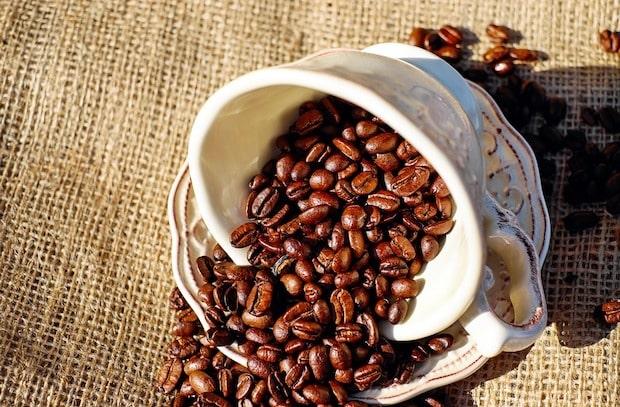 Photo of Wie wird man Kaffeeröster