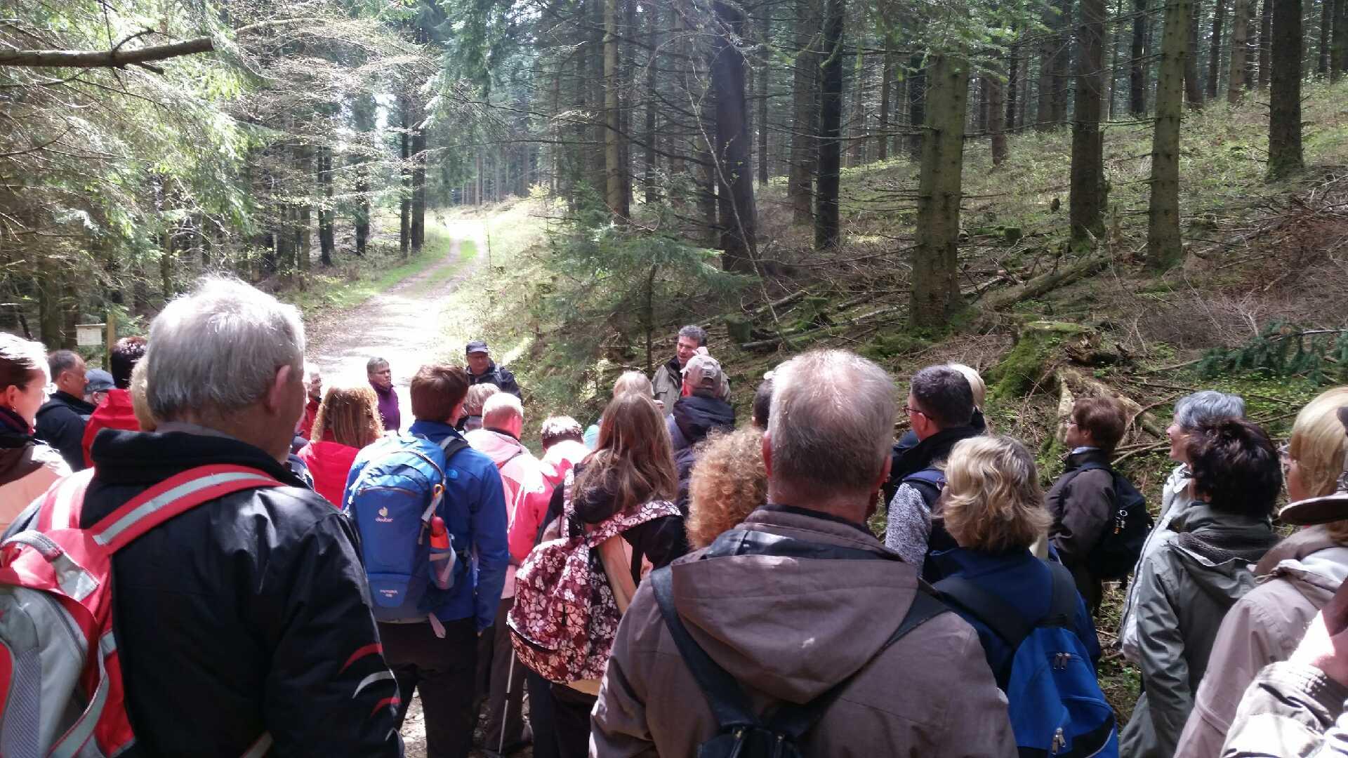 """Photo of Geführte Wanderung auf dem """"Sauerland-Höhenflug"""" war ein Erfolg"""