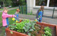 Kinder des städtischen Familienzentrums -Kleine Strolche- als Gemüsegärtner