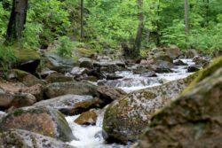<b>Wandern wo der Harz am schönsten ist</b>