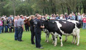 Ernte- und Tierschaufest im September in Drolshagen