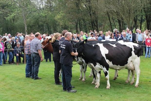 Photo of Ernte- und Tierschaufest im September in Drolshagen