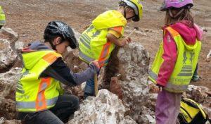 Hagen: Fossilien- und Mineraliensuche für Kinder in den Sommerferien