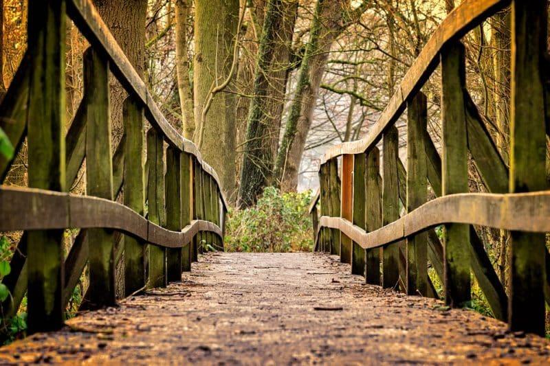 Winterwanderung am Sonntag rund um den Seilerwald – Anmeldung erforderlich!