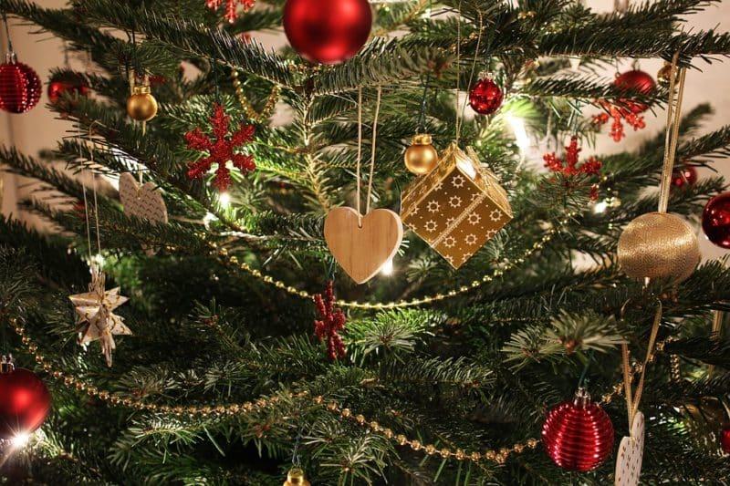 Photo of Abfuhr der Weihnachtsbäume in Menden
