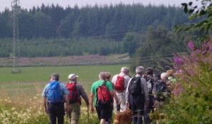 Wanderwoche auf dem Bestwiger Panoramaweg