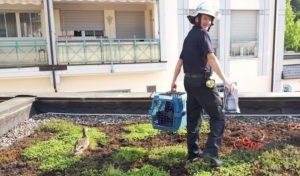 Rettungseinsatz von Polizei und Feuerwehr