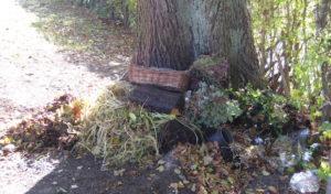 """""""Wilde"""" Abfallplätze auf den Friedhöfen"""
