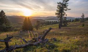 Rein in die Wanderschuhe und Willingen und Umgebung entdecken
