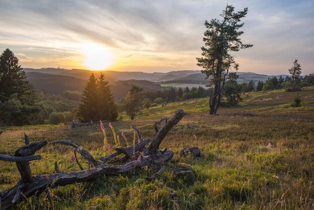 Photo of Rein in die Wanderschuhe und Willingen und Umgebung entdecken