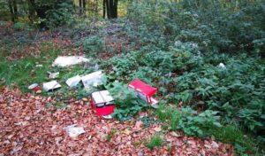 Umweltdelikt: Mehrere Kubikmeter Abfälle illegal entsorgt