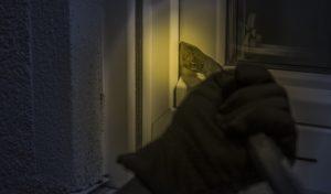 Wie man sein Haus gegen Einbrecher schützt