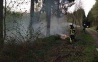 Waldbrand nach zündeln mit Feuerwerk