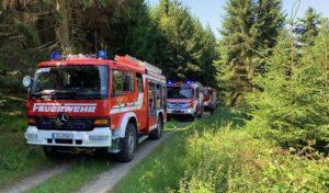 Schnell ausbreitenden Waldbrand in Lennestadt