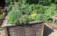 Mit einem Hochbeet zu mehr Ertrag im Garten