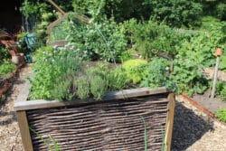 Ein Hochbeet im Garten bietet Hobbygärtnern viele Vorteile