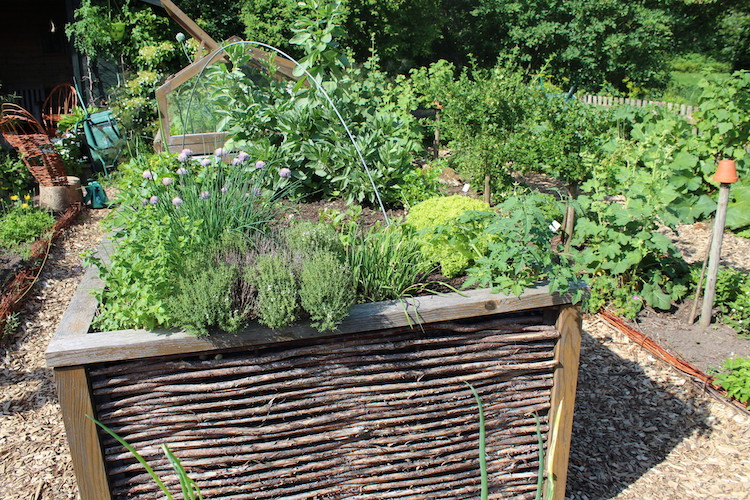Photo of Mit einem Hochbeet zu mehr Ertrag im Garten