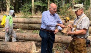Sundern erhält vom Land NRW 15.000 € für die Schädlingsbekämpfung