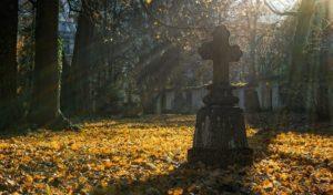Diebstähle auf Friedhof