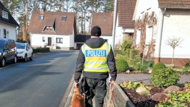 Photo of Polizeihund Starkad besteht Prüfung