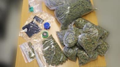 Photo of Drogen-Dealer festgenommen