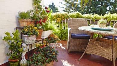 Photo of Torffreie Bioerden: 6 Tipps für nachhaltiges Gärtnern