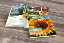 Photo of Hol Dir jetzt Dein kostenloses LandMomente Magazin